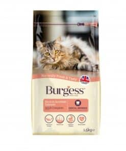 Burgess Adult Cat Salmon - Image