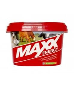 Maxx Energy Bucket - Image