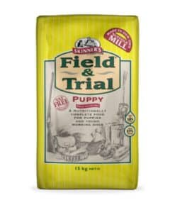 Skinners Field & Trial Puppy - Image