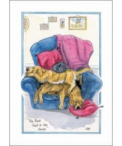 Alison's Animals Best Seat In The House Card - Image