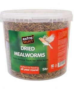 Extra Select Mealworms 5L - Image