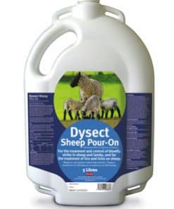 Zoetis Dysect Sheep Pour On 5L - Image