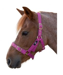 Hy Holly Fully Adjustable Head Collar - Image